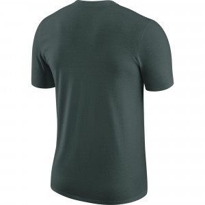 Nike NBA Boston Celtics Chrome Logo T-Shirt ''Pro Green''