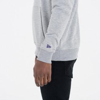 Hoodie New Era Team Logo Charlotte Hornets ''Grey''