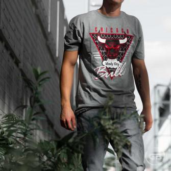 Kratka majica M&N NBA Chicago Bulls Last Dance Windy City ''Grey''